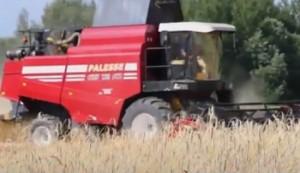 УБОРОЧНАЯ-2020. Хлеборобы из Тулово предложат сельхозорганизациям высококачественное зерно по выгодным ценам