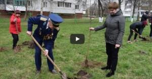 В Витебске заложили сад в честь Героя Советского Союза Афанасия Белобородова