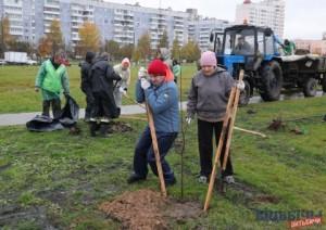 12 октября, во время городского субботника, в Витебске благоустраивали парки, скверы, убирали листву во дворах, высаживали деревья