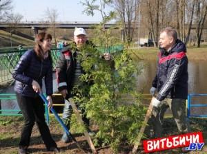 Витебск присоединился к республиканскому субботнику